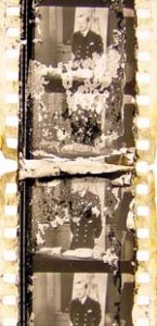 Rotting Film